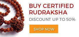 Buy Rudraksha